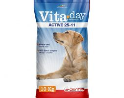 Vita Day Active Dog Dry Food 10 kg
