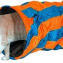NOBBY CAT TUNNEL BLUE ORANGE STRIPED 50 X 25 CM