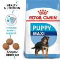 Royal Canin Maxi Puppy (4 KG)